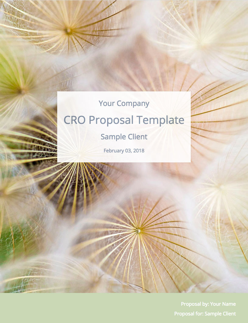 CRO Proposal Template Cover Image The CRO