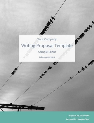 Freelance Writing Proposal Template And Sample Content  Bidsketch